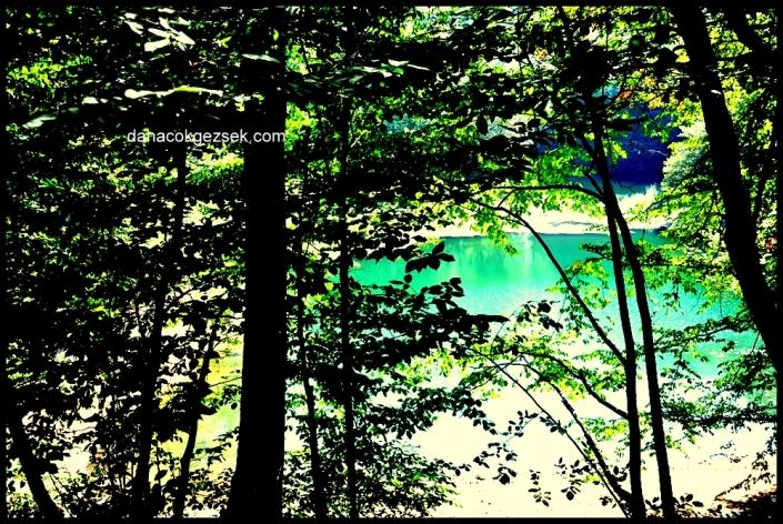 yedigöller den bir göl