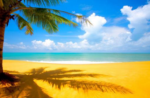 YELLOW BEACH